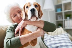 Caregiver Plano, TX: Your Dad Can No Longer Care for His Pet - What Do You Do Now?